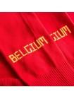 купить Футбольные гетры Бельгия домашние  2018