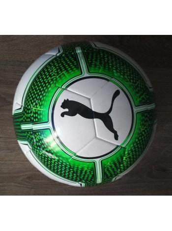 купить Профессиональный мяч футбольный Puma EvoPower 5.3 FIFA (Оригинал) бело-зеленый